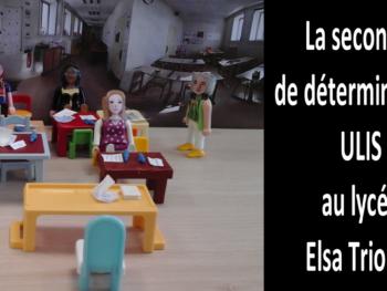 La 2nde de détermination ULIS au lycée Elsa Triolet